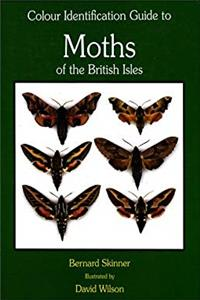 Colour Identification Guide to Moths of the British Isles: (Macrolepidoptera) (Third Revised Edition) epub download